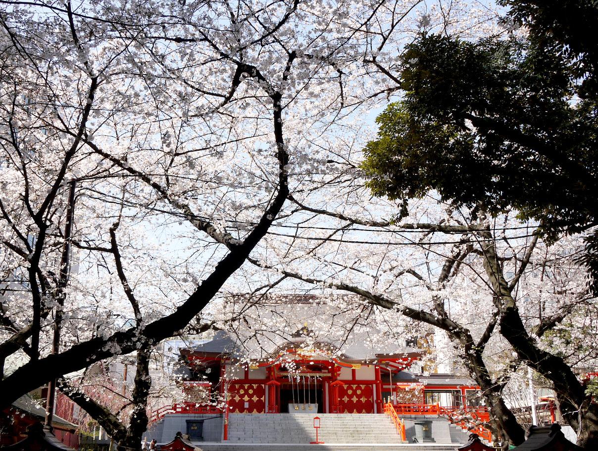 【連載】いせたんさんぽ Vol.1/新宿の守り神「花園神社」_1