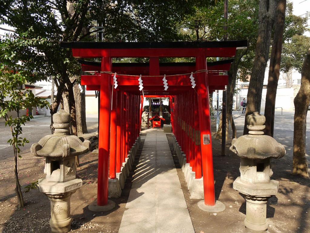 【連載】いせたんさんぽ Vol.1/新宿の守り神「花園神社」_3