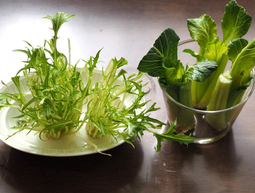 水菜は古い葉から、小松菜は内側から新しい葉が出てくるので、摘んでそのまま食べてみて
