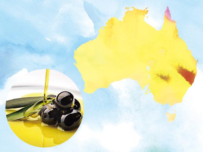 南半球から収穫の報!「オリーブオイル・ヌーヴォー」で初夏を祝おう_1