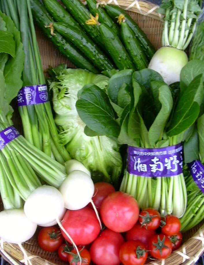 湘南生まれの地の利が生きる! 湘南野菜を使った料理の魅力_1