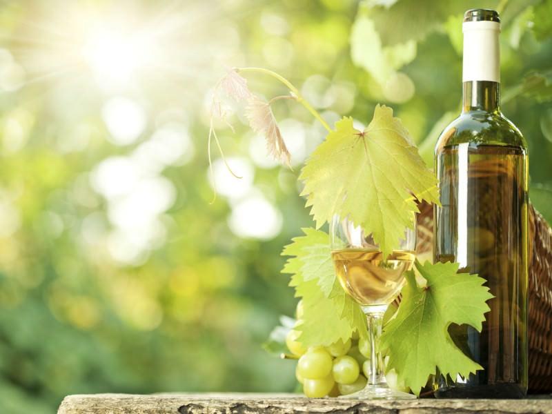 ソムリエリーダー宮沢さんの「いま飲みたい」初夏の白ワイン3選_1
