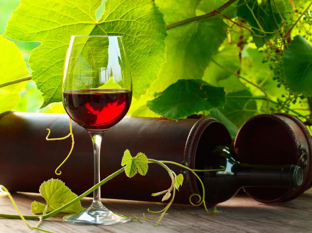 夏のギフトは小粋にワイン。相手に喜ばれる選び方とは_1