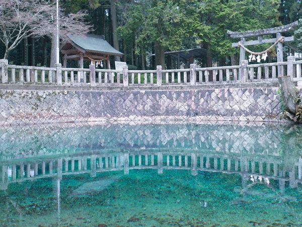 大嶺酒造「Ohmine」を生み出す、秋吉台・弁天の湧水の画像