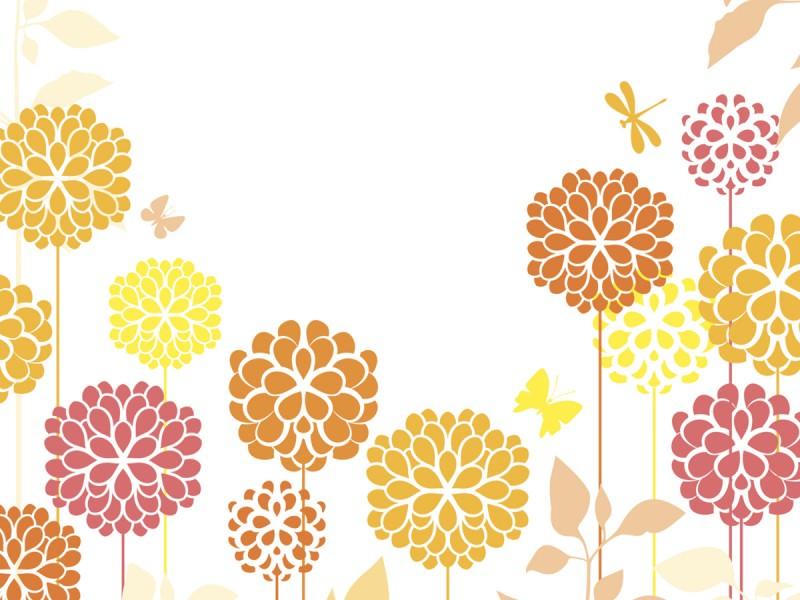 重陽の節句のシンボル、菊のイメージ