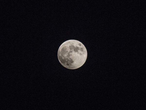 秋の澄んだ夜空に浮かぶ満月