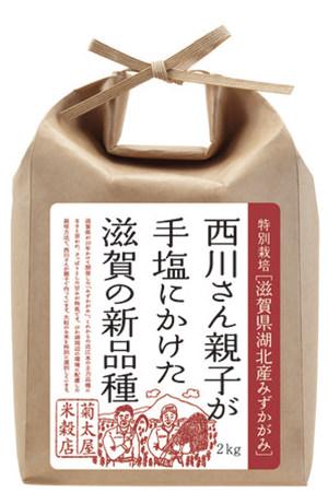 近江米の新品種「滋賀県湖北産みずかがみ」