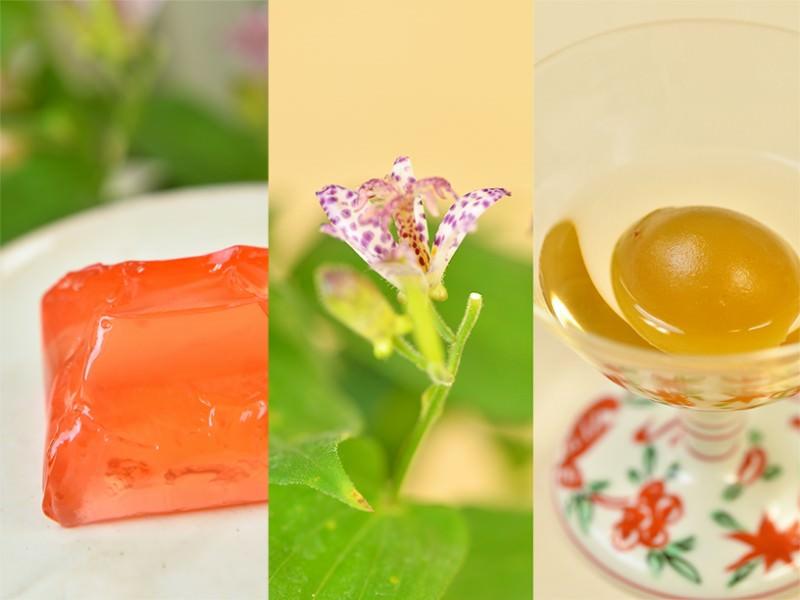 『叶 匠壽庵』の里山に咲く花と、梅菓子の標野(しめの)・木貴子(もくきし)