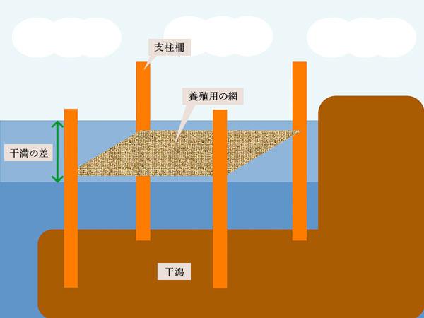 海苔の栽培方法「支柱柵養殖」