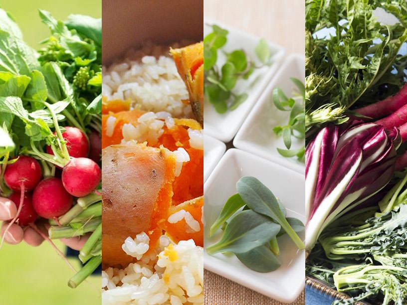今知っておきたい、旬の野菜と注目品種まとめ