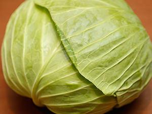 【レシピあり】シェフの裏技が満載! 春キャベツ、新玉ねぎ……旬を活かした野菜レシピ