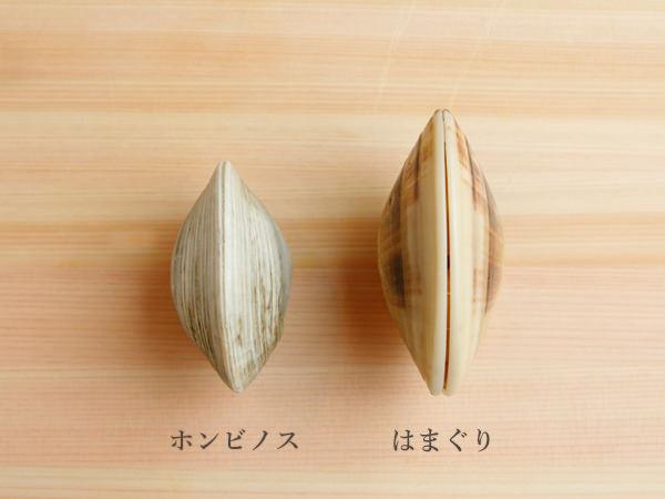 はまぐりとホンビノス貝の厚みの違い
