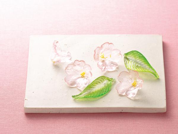 紫野源水の桜の有平糖