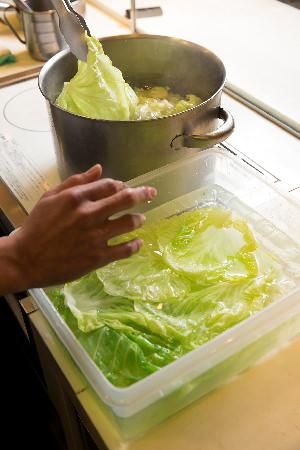 キャベツを1分くらいゆでたら、外側の葉からはがしていき、冷水に放つ。