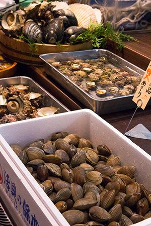 生きたまま並ぶ新鮮な貝類