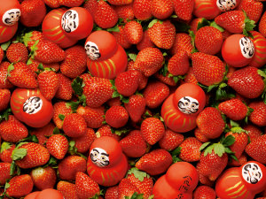 日本を代表する「いちご」はコレ!注目の7品種を徹底解剖