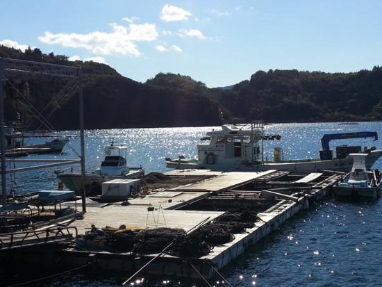 鯛一郎クンが育てられる愛媛県宇和島市の海