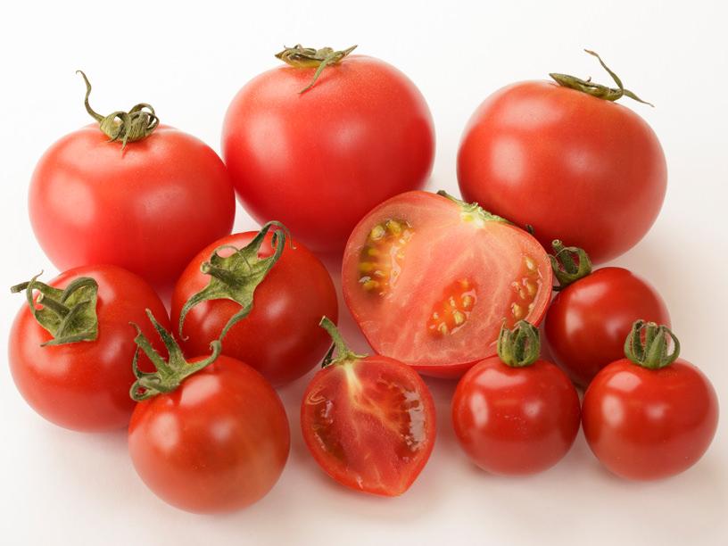 徳谷トマト、フルーツミニトマト、優糖星の集合