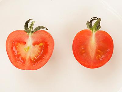 プチぷよと一般的なミニトマトの断面の比較