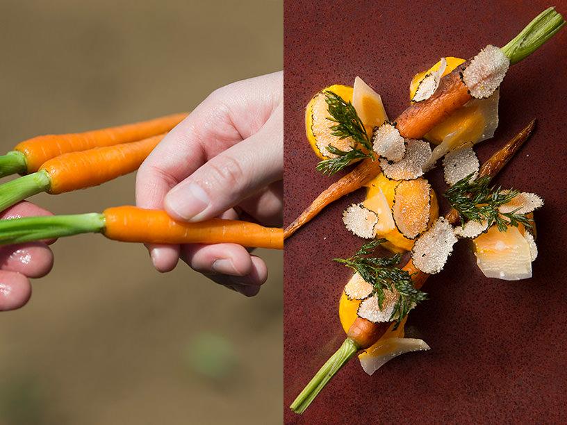 TAKEI FARMのミニにんじんと、ミニにんじんを使った調理