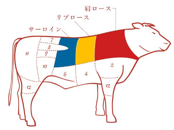 牛ロースの各部位の場所の説明