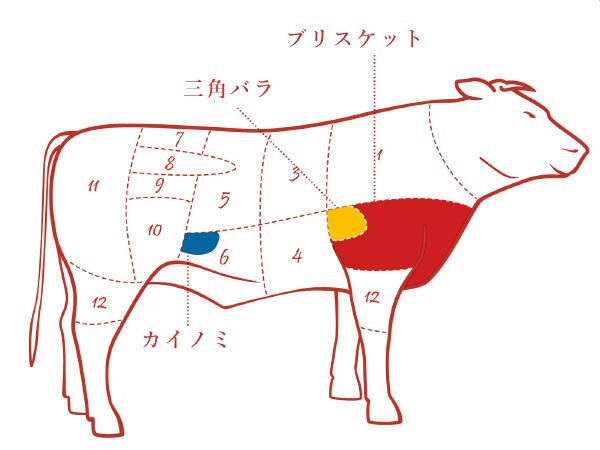 牛バラの各部位の場所の説明