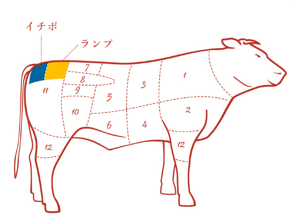 牛モモの各部位の場所の説明