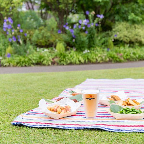 芝生の上でピクニック・ビアガーデン