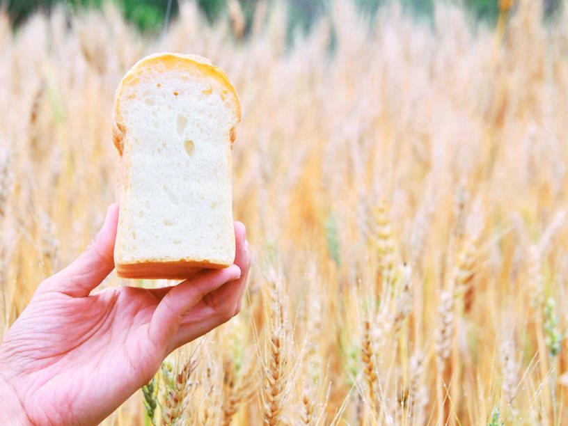 国産小麦のパン