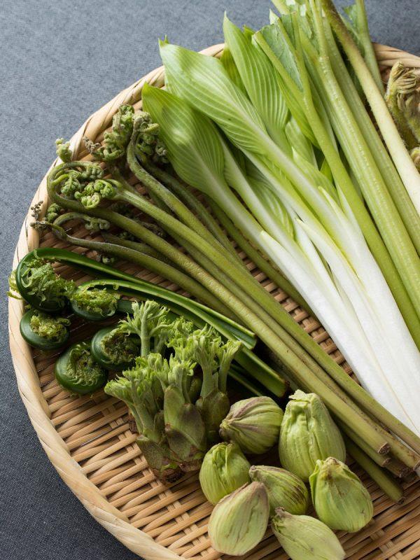 ザルに盛り合わせた山菜イメージ