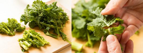 青菜はかたい部分、やわらかい部分に手でちぎって分ける