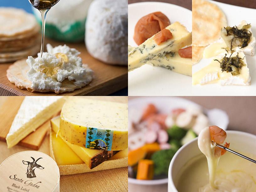 さまざまなチーズのイメージ