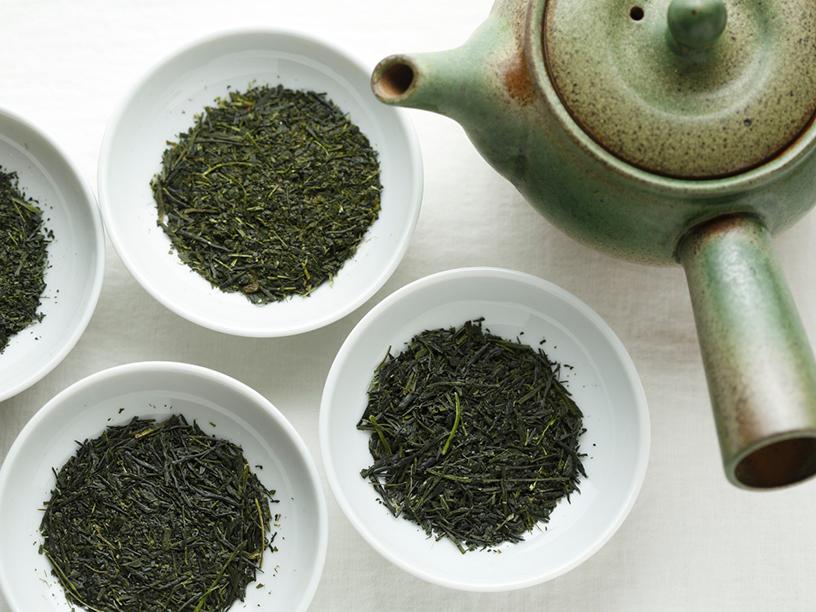 日本茶テロワールで扱う茶葉4種類