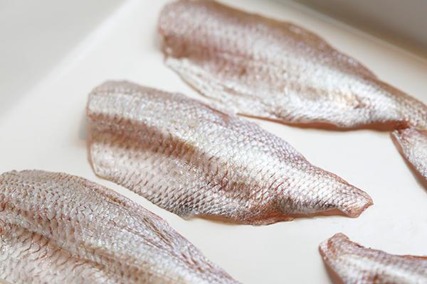 昆布酒漬けにおすすめの白身魚、春子鯛(かすごだい・小鯛のこと)。ほかにきす、さより、のどくろなどがおすすめ。
