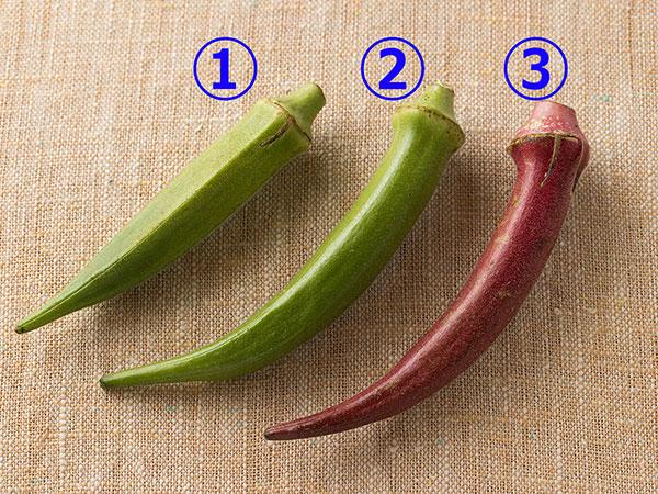 生で食べて美味しいオクラの品種。オクラ、丸オクラ、紅オクラ