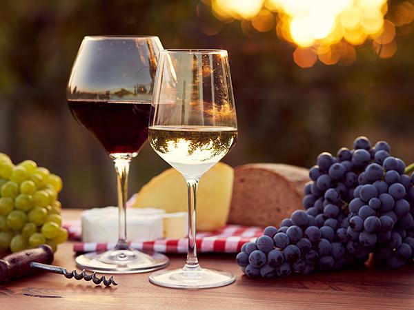 赤ワインと白ワインとブドウのイメージ