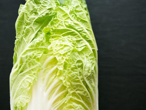白菜のイメージ