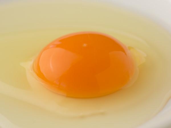 天来烏骨鶏卵