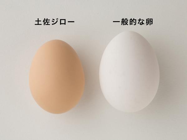 土佐ジロー有精卵と一般的な鶏卵
