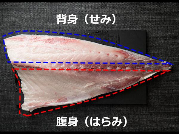 ぶりの背身と腹身の図解