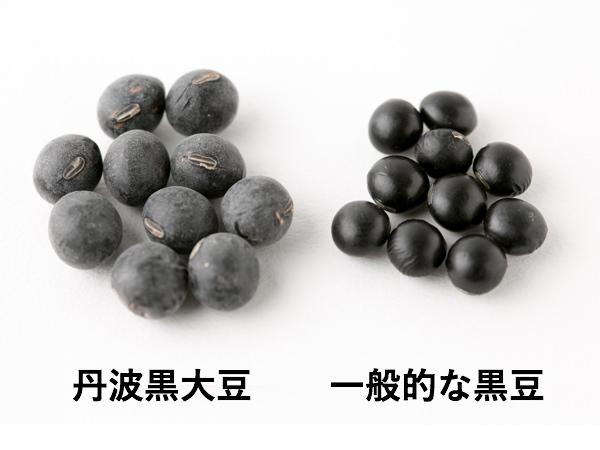 (左から)丹波黒大豆と一般的な黒豆