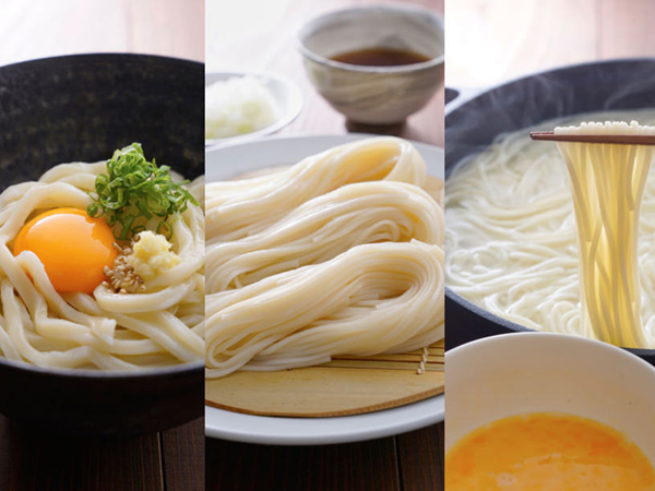 日本の三大うどんのイメージ
