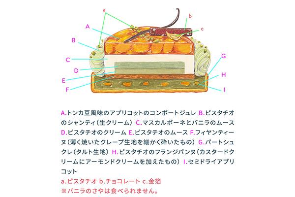 パティスリー ロタンティックのアブリコピスタッシュの断面図