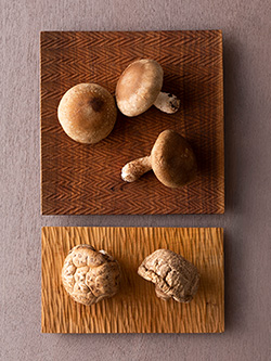 奥多摩原木しいたけと珠冬菇