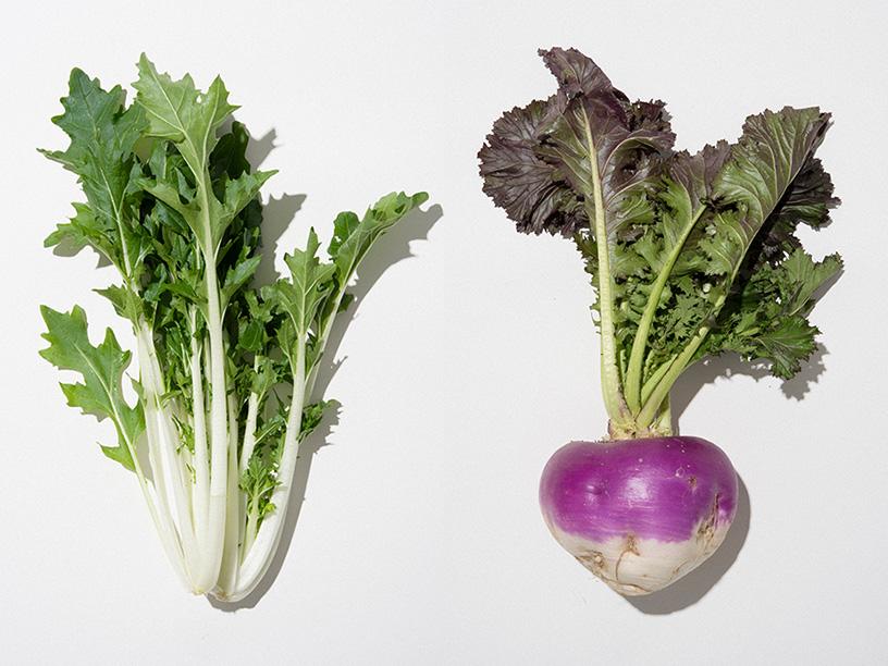 左から潮江菜、田村カブ