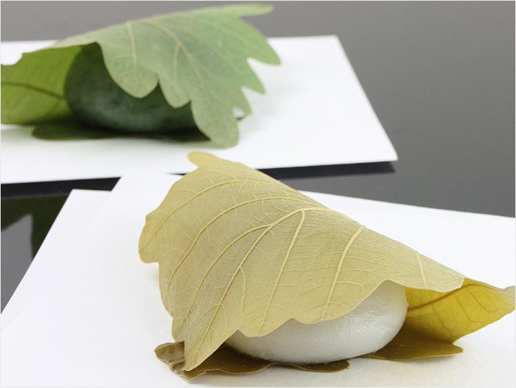 叶 匠壽庵の柏餅と柏餅蓮