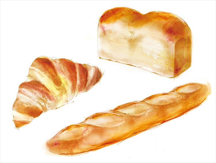 イラストレーター秋山洋子氏によるパンのオリジナルイラスト