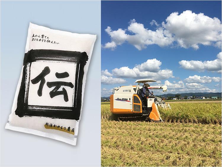 <かやもり農園>新潟加茂産植酸栽培コシヒカリ「伝」精米5kg