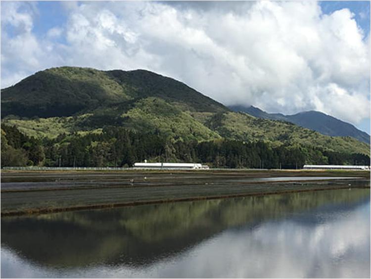 新潟県燕市のイメージ